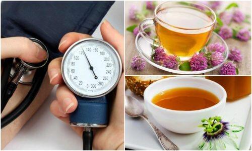 pissenlit et hypertension artérielle