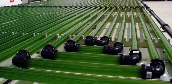 Un bioréacteur à base d'algues